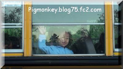 school+bus_convert_20091005235636.jpg