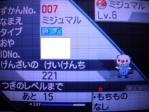 キラリンポケモン奮闘記