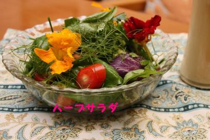 ハーブサラダ・naopi作