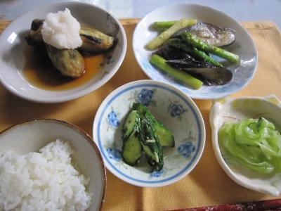 110702夏野菜1