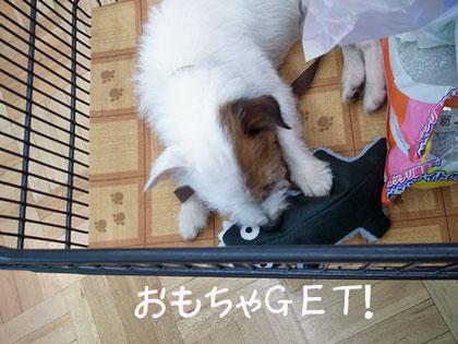 2011-09-21_10_48_14.jpg