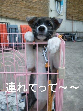 2011-10-12_14_25_13.jpg