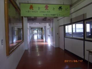 IMGP0278.jpg