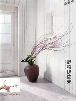 2011-1-27-florist.jpg
