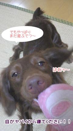 20091020_5.jpg