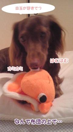 20091022_2.jpg
