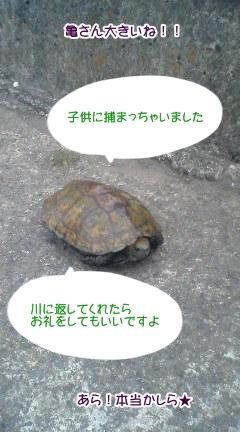 20091102_1.jpg