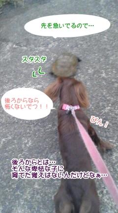 20091102_4.jpg