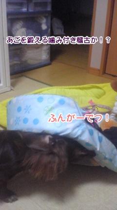 20091113_2.jpg