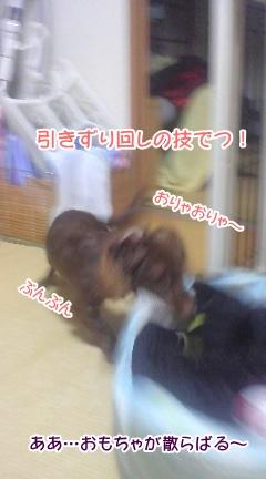 20091113_4.jpg