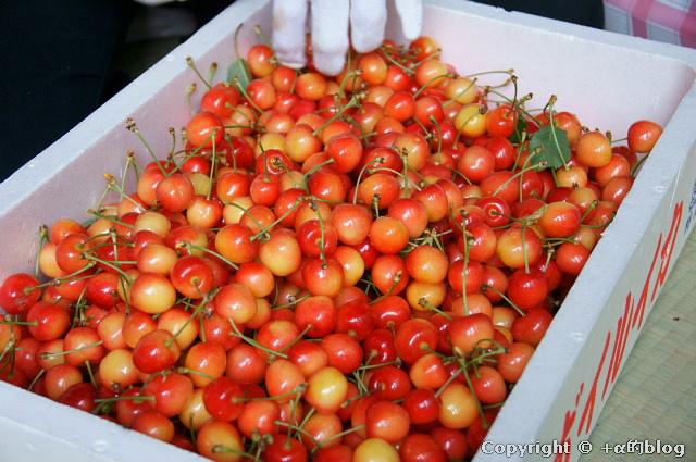 cherry110704g_eip.jpg