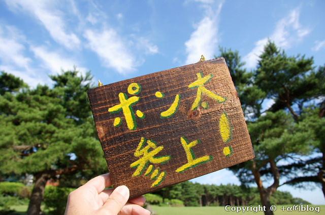kawayo11a_eip.jpg