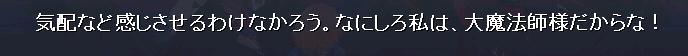 大魔法師(キリッ