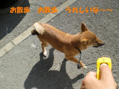 CIMG0828_convert_20091017134203.jpg