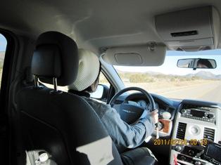 pome driver
