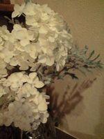 お花5-2
