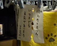 1_20100707182609.jpg