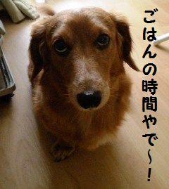 DSCN3396_20091213134715.jpg