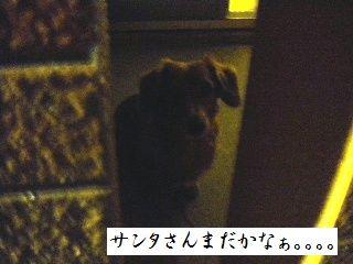 DSCN3779.jpg