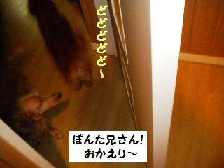 DSCN5147_20100924164041.jpg