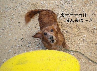 DSCN5754_20111003181749.jpg