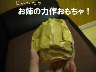 DSCN6991.jpg
