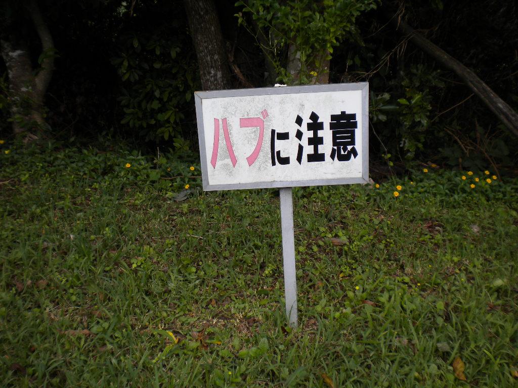 DSCN7589.jpg