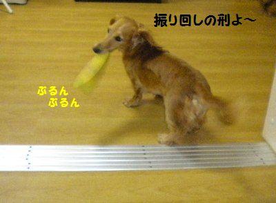 DSCN9371.jpg
