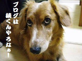DSCNjiro.jpg