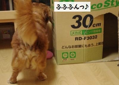 IMGP9466.jpg