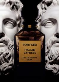 TF_ITALIAN_CYPRESS.jpg