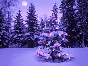 cristmasu_01.jpg