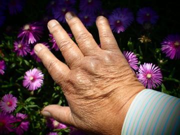 好きな人の手