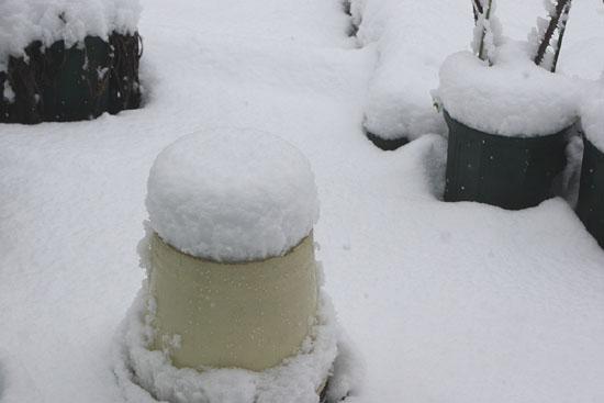 09初雪02