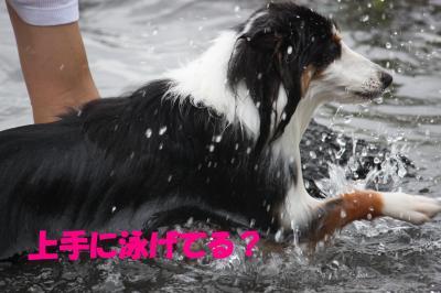本栖湖10