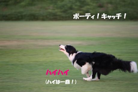 20090830Disk2.jpg