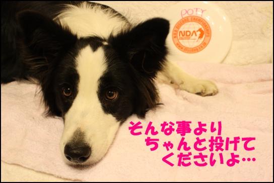 木曽三川1