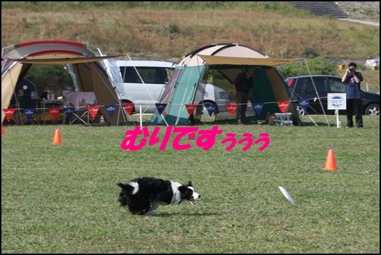 木曽三川10.313