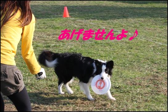 木曽三川10.316
