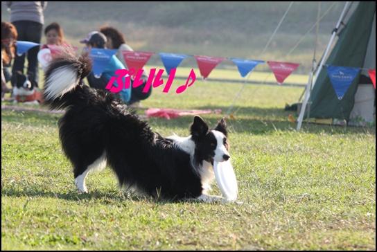 木曽三川10.318