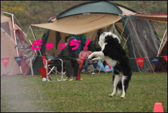 木曽三川11.16