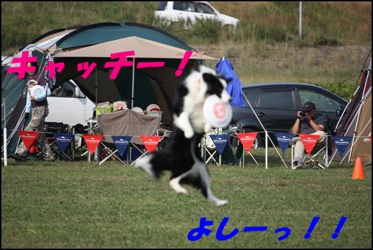 木曽三川11.15