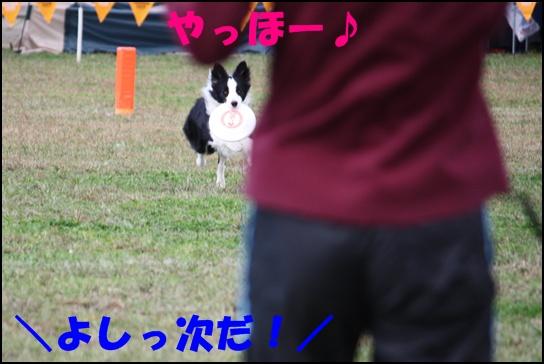 木曽三川11.23