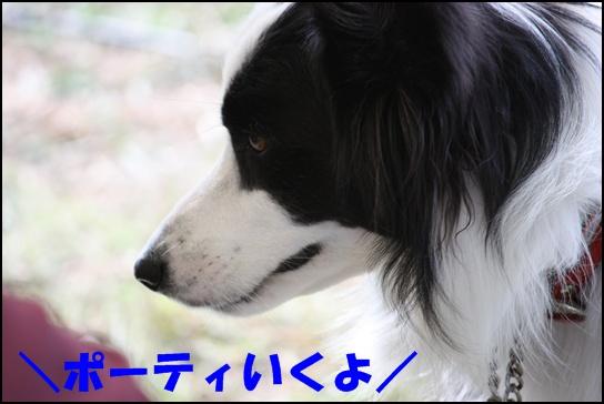 木曽三川11.21