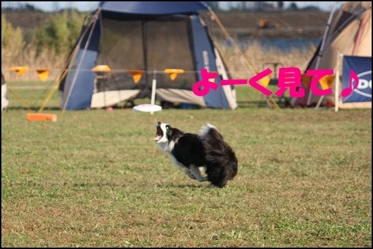 木曽三川11.26