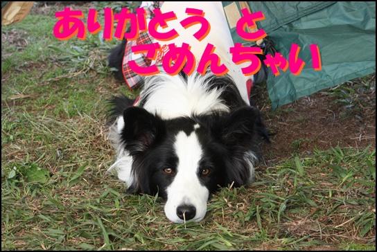 木曽三川11.31