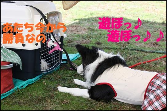 木曽三川11.32