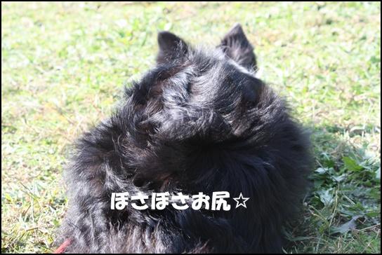 木曽三川10.31d