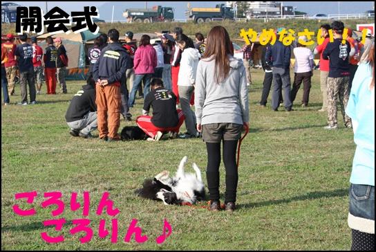 木曽三川10.31c
