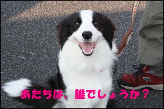 木曽三川10.34j